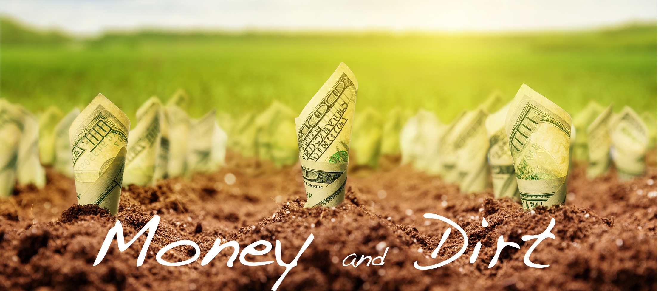 Money and Dirt
